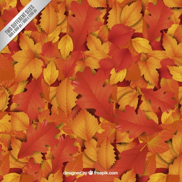 Hojas de otoño en vectores para descargar gratis