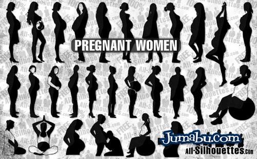 Siluetas de Mujeres Embarazadas en Vectores
